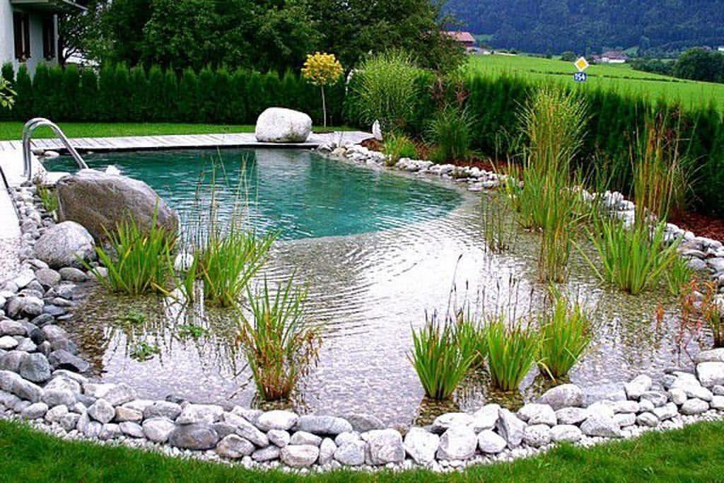 natural swimming pools in fort lauderdale