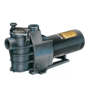 Hayward Maxflo Pool Pump Florida