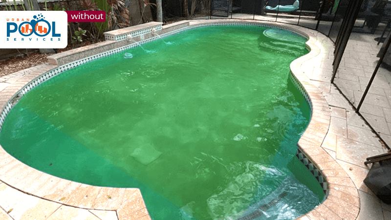 Before urban pool services